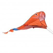 Delfín oranžový
